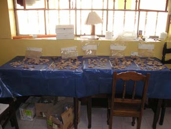 A table with a blue table cloth covered with bone fragments. There are five different groups set up in front of the bag they came from. There is a chair in front of the table and a box under it. There is a long window in the yellow wall behind it. On the sill, there is a lamp, boxes, and supplies.