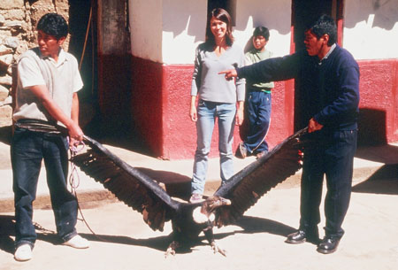 There is a vulture with its wings outstretched in the middle of the road. Each wing is being held by a person. On the left a person wearing a white tshirt and jeans and on the left a person in a navy jacket and jeans. The person on the right is point at/ in the direction of the person on the left. Tiffiny is standing behind them in a gray shirt and jeans. She is smiling into the camera. There is somone behind her leaning against a red and white wall in a green shirt and jeans.