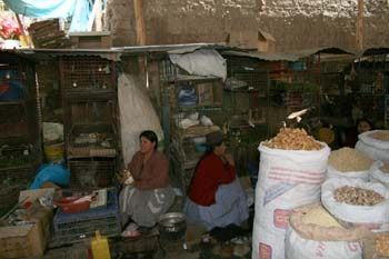 There are two people sitting on the ground in the market with their backs to each other. They are sitting by a cages of guinea pigs and other animals. There are large white bags of different crops. The person on the left is wearing a red sweater and a gray and white skirt. Their black hair is in a bun. The other person is wearing a red shirt and a blue skirt.