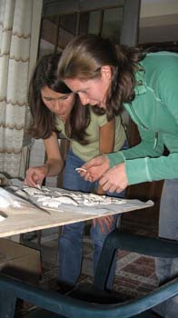 A close up of Tiffiny and Cat hunched over a gray table with white ceramic shards on it. Tiffiny is wearing a green shirt and jeans. She has dark brown shoulder length hair. Cat is wearing a light yellow shirt, teal jacket, and jeans. She has shoulder length brown hair.