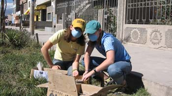Cat and Susan are sitting on the grass next to a sidewalk. There is a gray building behind them. They are sifting through boxes of rocks and dirt. They both have blue face masks on. Cat (left) is wearing a light yellow shirt, jeans, and a dark yellow hat. Susan is wearing a blue shirt, jeans, and a teal hat.