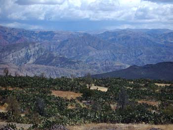 There are hills in the foreground covered in plants. In the background are mountains. There are large puffy white clouds in the sky.