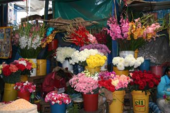 A stand with lots of different flowers at the market.