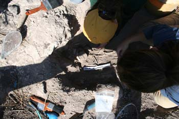 Two people hunched over a burial in rocky ground- looking into it. There is a shadow cast over the skeleton in the rectangular hole. The person on the right has a yellow base ball cap and dark hair. The other person is wearing a blue tshirt and dark hair in a ponytail.