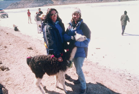 Kate (on the left) and Tiffiny are standing by a llama. Kate's hand is on it's brown back and Tiffiny is holding its white head. The llama's legs and the front of its neck are also white. There are bits of brigh tpink fluff in its fur. Kate is wearing a blue shirt, black jacket, and sunglasses. She has shoulder length brown curly hair. Tiffiny is wearing a blue jacket, jeans, and a gray winter hat. she has shoulder langth brown hair. They are both smiling.
