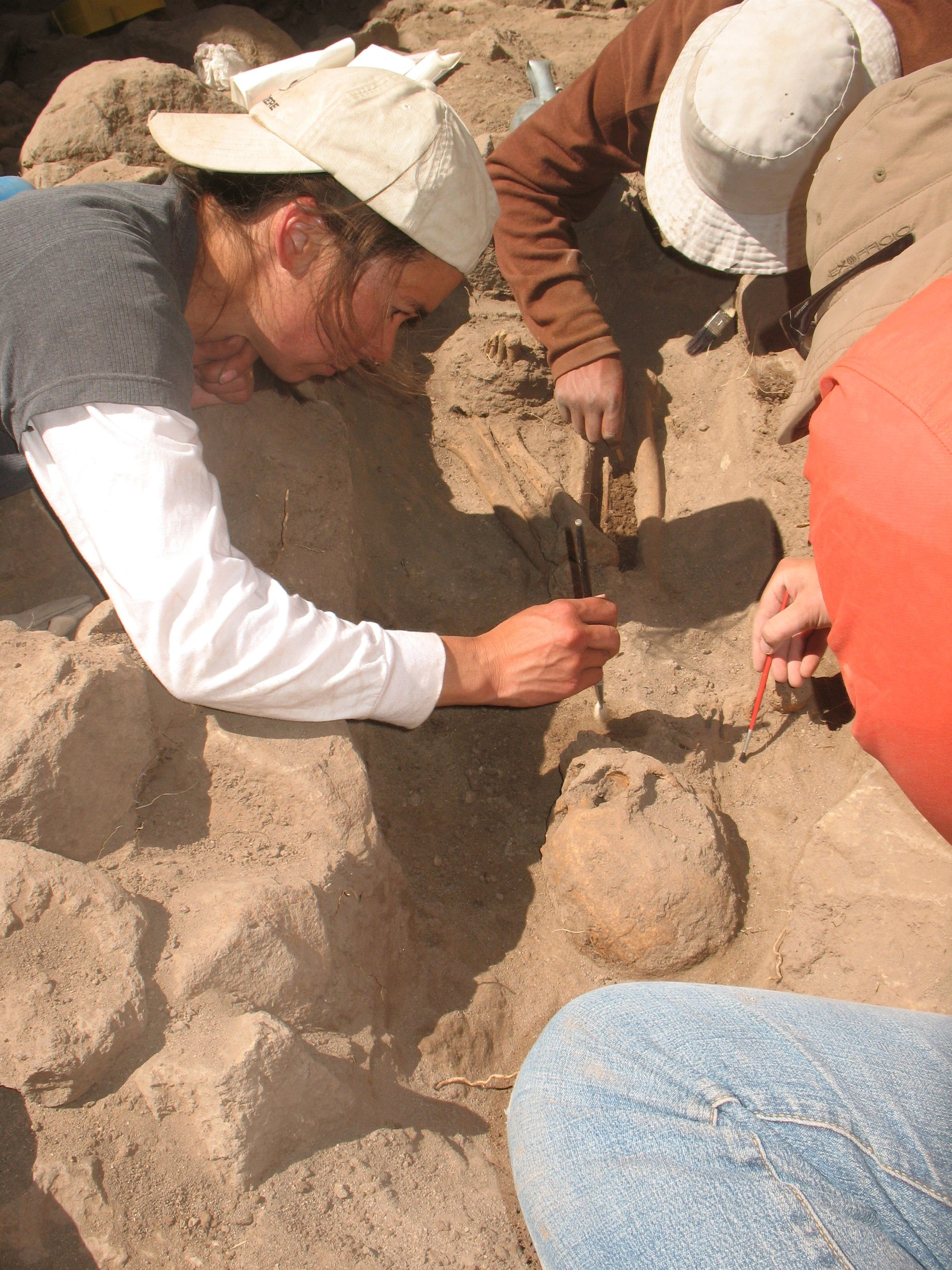 Tiffiny tung with two other researchers are using brushes on a skeleton covered in dirt and surrounded by rocks.