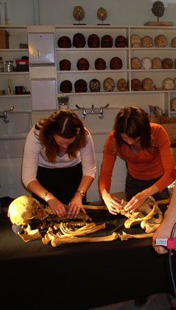 Heather and Tiffiny articulating a skeleton. There is skulls on white shelves behind them. They are both looking down. Heather is wearing a white long sleeved shirt and pants. She has shoulder length brown hair. Tiffiny is wearing an orange shirt and black pants. She has shoulder length brown hair.