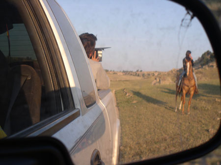 A photo taken in the side mirror of a gray pick up truck. You can see someone sitting in the trunk with a camera. He is wearing a gray shirt and has brown hair. He is filming someone on a brown horse.