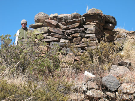 Cat standing next to a rectangular structure of laid stone of varying colors. There are shrubs and rocks in front of the structure. Cat is wearing a white long sleeved shirt, a green vest, and a gray winter cap. She is looking down.