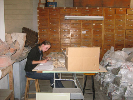 A side view of Emily looking down at papers and vertebrae on the wooden table in front of her. There are large ceramic objects glued together on the wooden table behind her. In the background,there is a tall wooden shelf completely covered with wooden drawers. On the right of the photo are plastic bags. Emily is wearing a black jacket and jeans. Her light brown hair is in a ponytail.