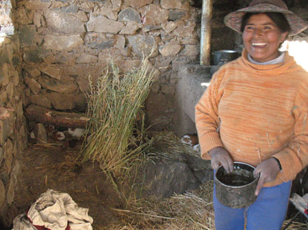 Guillermina is holding a small bucket full of water and smiling past the camera to the left. There is a stone wall behind her and a half wall to the left. The stone are orange-sih and are all different sizes. On the ground there is a rock, a pile of hay, and five guinea pigs with vary orange and white patches. Guillermina is wearing a orange long sleeved shirt, blue pants, and a brown hat.