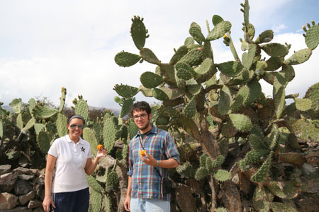 Kristina and Matt are standing in front of very large cacti. They are both holding a orange cactus fruit. Kristina is wearing a white polo shirt with a Vanderbilt logo- a black star with a gold outline and a white V on the star. She is wearing black pants with white stripes down the side, a gray headband, and sunglasses. Her black hair is pulled back. Matt is wearing a red, blue, and white plaid shirt as well as jeans and glasses. He has short brown hair and facial hair.