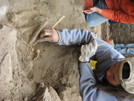 Tiffiny is lying on the ground and reaching into a burial with a small wooden tool. She is holding another tool in other hand that has a rounded red tip but is otherwise gray. There is a person sitting in the background as well as a pair of legs wearing jeans. Tiffiny is wearing a blue sweatshirt, a white glove, and a backwards white baseball cap. Her brown hair is out of the hat on the right side of the photo. The other person is wearing an orange long sleeved shirt and jeans.